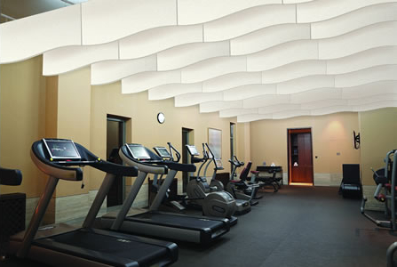 Bafflesorba Soundproofing Acoustic Suspended Ceiling Panels - Gym