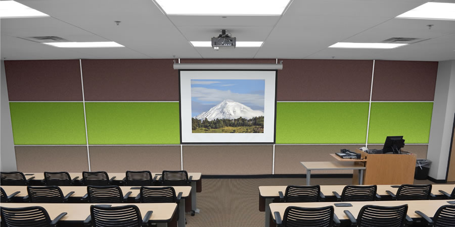 Wallsorba Soundproofing Acoustic Panels - Lecture Theatre