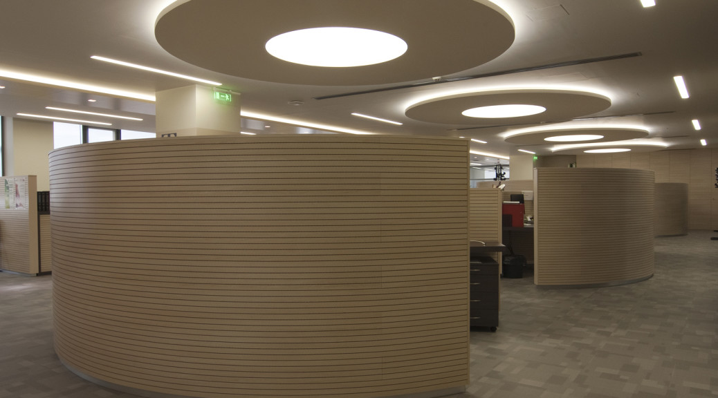 Topakustik Soundproofing Wood Acoustic Panels - Office Area